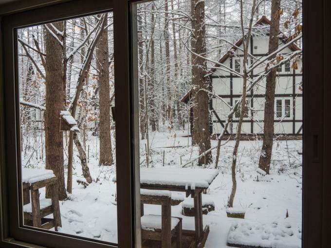 G.W.初日は雪・・これが本当に平成最後の雪リス!_f0276498_22522348.jpg