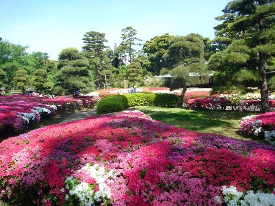新緑の皇居東御苑_c0192215_1750437.jpg