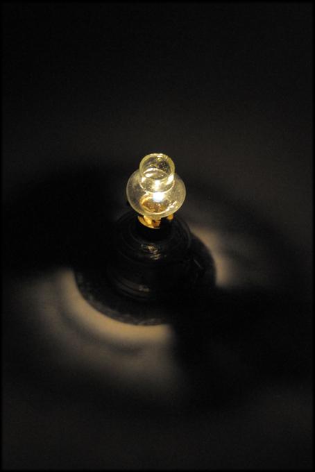 豆ランプの楽しみ_d0221430_17555062.jpg