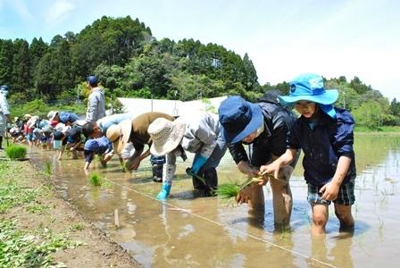 米作り1・田植え体験をしよう/That\'s G.W.~大型連休2日目~_a0123836_14023821.jpg