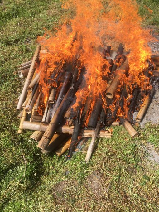 洗面所その8。竹炭作りました!_f0182246_17014596.jpg