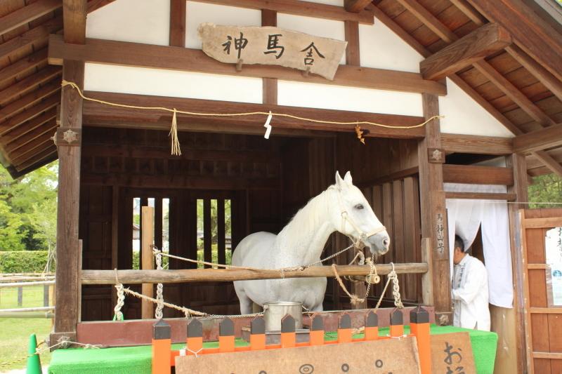 4月28日 北野天満宮から上賀茂神社へ_a0023466_19101388.jpg