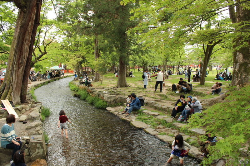 4月28日 北野天満宮から上賀茂神社へ_a0023466_19102518.jpg