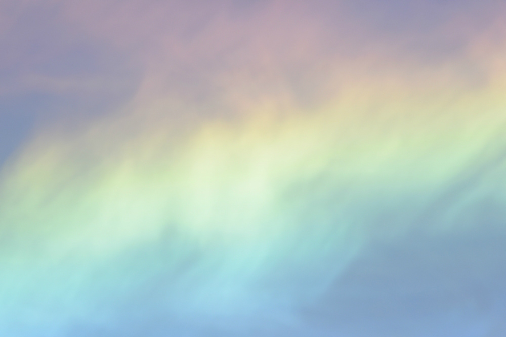 こんなに近くで...サンショウクイ 長〜い彩雲_f0053272_23435621.jpg