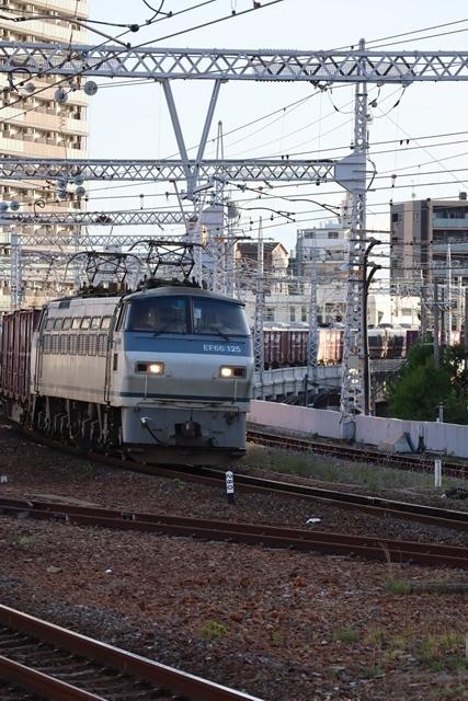 藤田八束の鉄道写真@北朝鮮船と水産庁船が激突、日本の排他的経済水域で・・・大和堆は好漁場、イカが沢山いる水域・・・日本の対応は_d0181492_15085241.jpg
