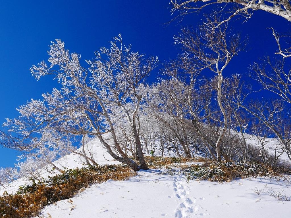 野塚岳とオムシャヌプリ、2019.4.28ー速報版ー_f0138096_21351058.jpg