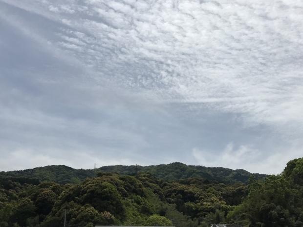 和歌山帰省中です_f0242002_00121481.jpeg
