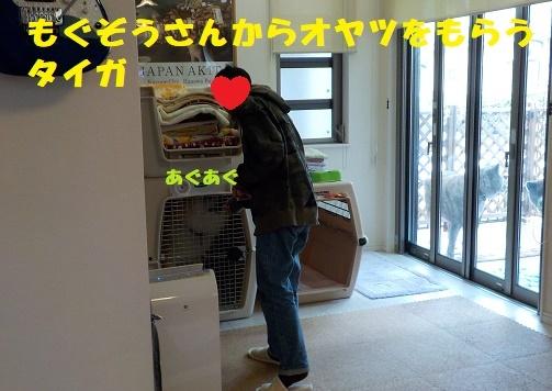 f0121712_09022749.jpg