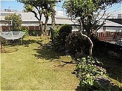 庭の大掃除_c0087349_09181409.jpg