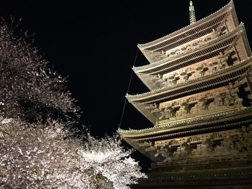 京都の旅\'19 Ⅲ 京都桜旅その1_e0326953_17374063.jpg