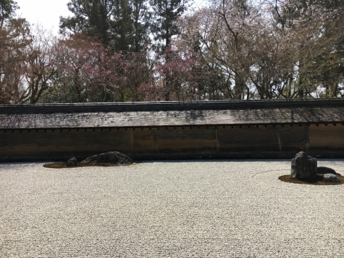 京都の旅\'19 Ⅲ 京都桜旅その1_e0326953_22194539.jpg