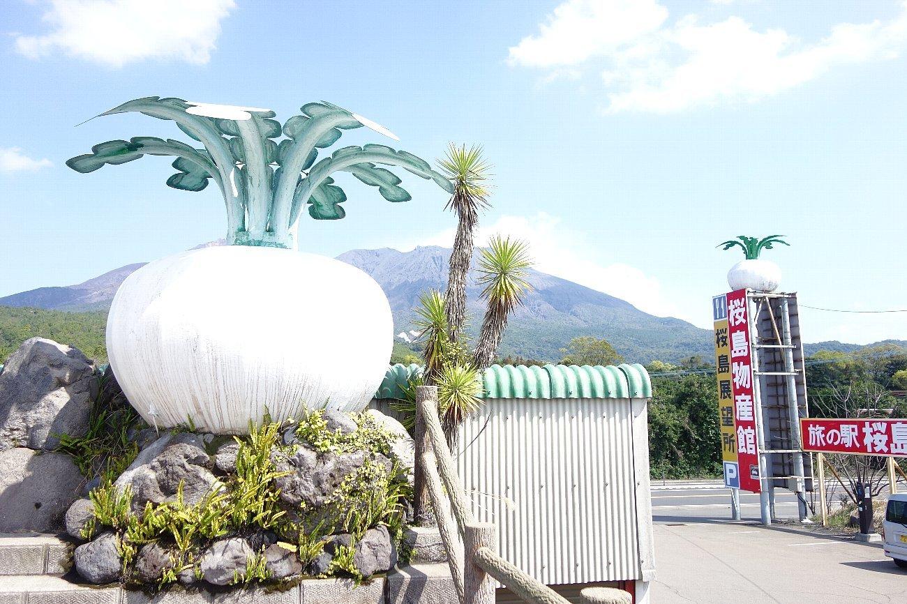 桜島にバスで上陸_c0112559_08230222.jpg