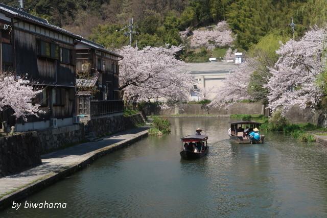 故郷の春~八幡堀にて_b0055171_16162308.jpg