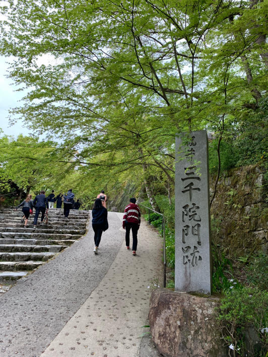 新緑を堪能しに京都大原へ_f0378683_23194817.jpg