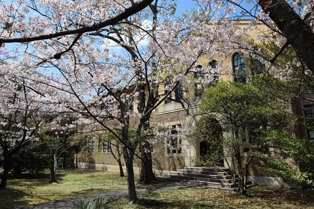 私の愛する街西宮市、阪神淡路大震災からの復興23年後の姿・・・復興した文教都市西宮、名門校神戸女学院・関西学院大学の美しさ_d0181492_20585167.jpg