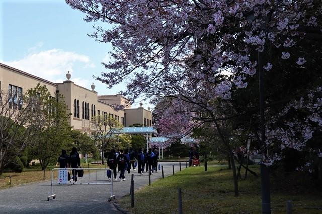 私の愛する街西宮市、阪神淡路大震災からの復興23年後の姿・・・復興した文教都市西宮、名門校神戸女学院・関西学院大学の美しさ_d0181492_20594590.jpg