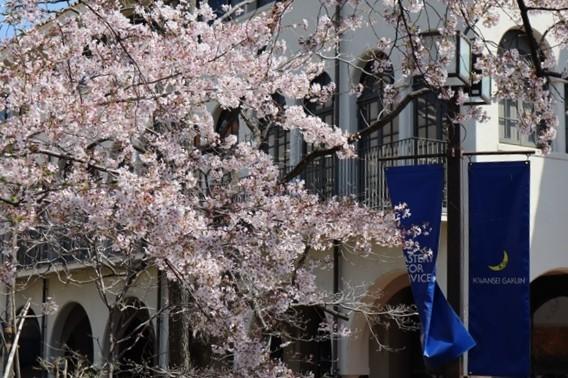 私の愛する街西宮市、阪神淡路大震災からの復興23年後の姿・・・復興した文教都市西宮、名門校神戸女学院・関西学院大学の美しさ_d0181492_23281212.jpg