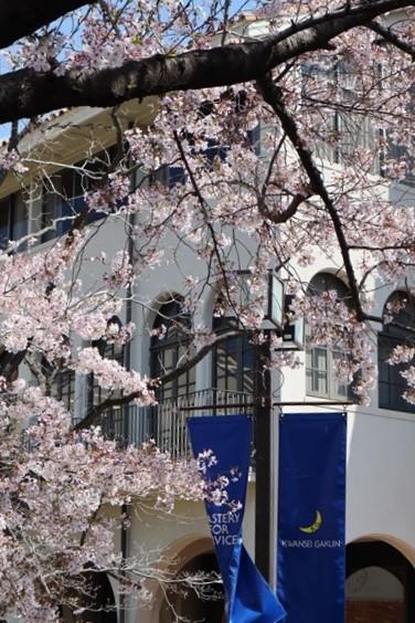 私の愛する街西宮市、阪神淡路大震災からの復興23年後の姿・・・復興した文教都市西宮、名門校神戸女学院・関西学院大学の美しさ_d0181492_23282038.jpg