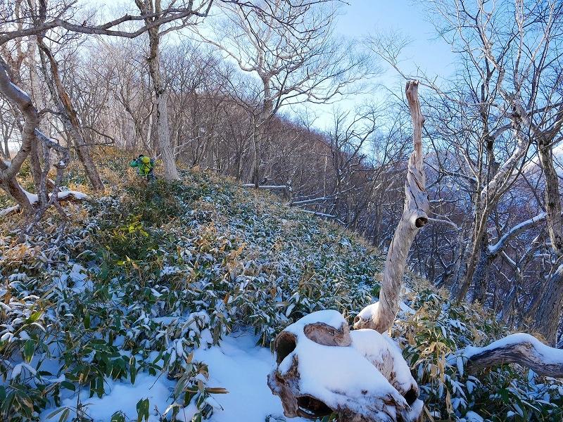 野塚岳とオムシャヌプリ、2019.4.28ーその1ー_f0138096_13451853.jpg