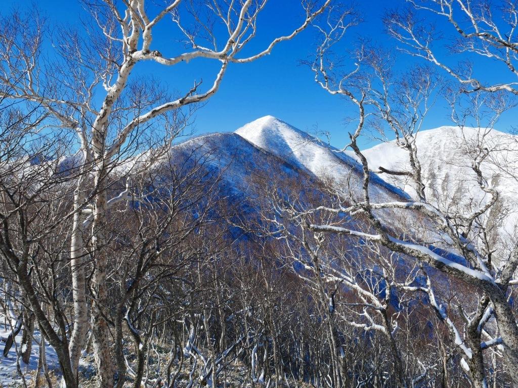野塚岳とオムシャヌプリ、2019.4.28ーその1ー_f0138096_13452356.jpg