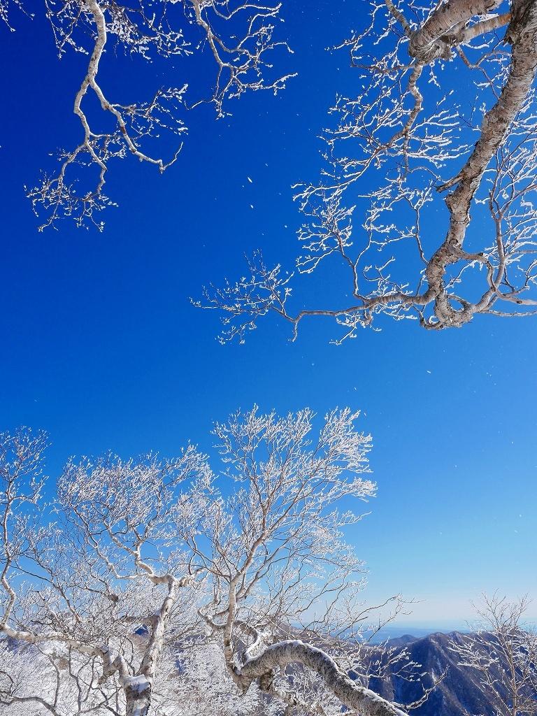 野塚岳とオムシャヌプリ、2019.4.28ーその1ー_f0138096_13472529.jpg