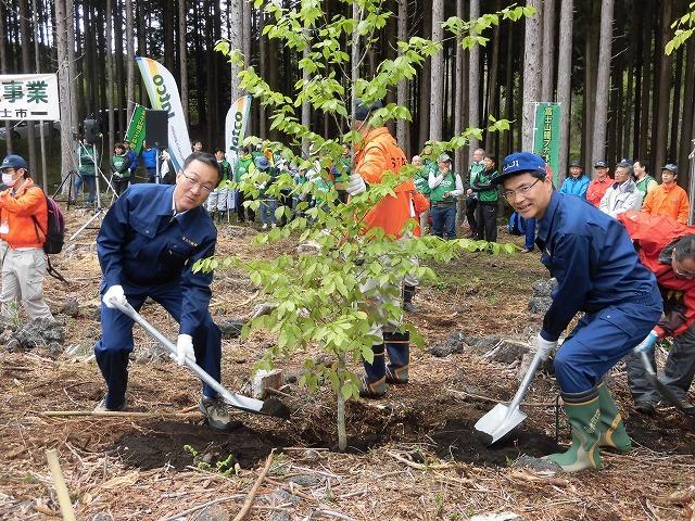 平成30年度副議長として最後の公務 「第26回 富士山麓ブナ林創造事業」に参加_f0141310_09102119.jpg