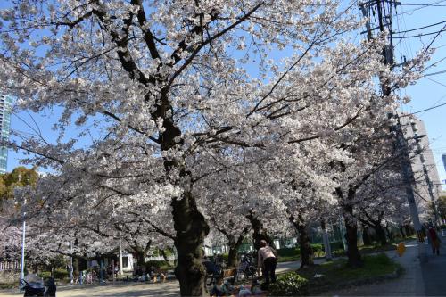 大阪市福島区のやきとり六源です!_d0199623_05322025.jpg