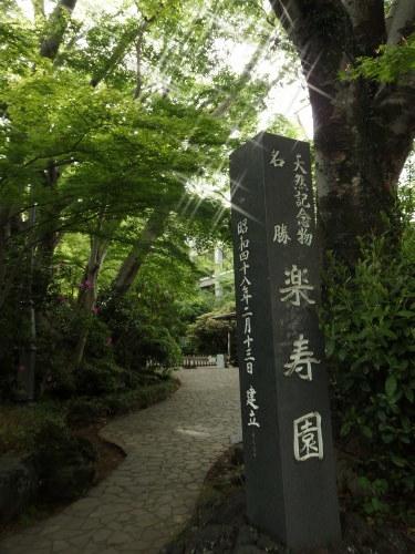 静岡へ 遊びに行く_f0325525_22230119.jpg