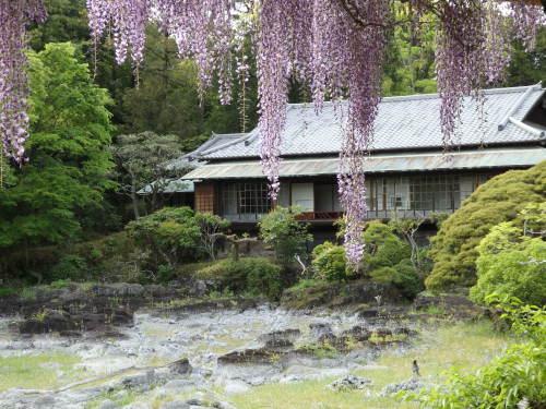 静岡へ 遊びに行く_f0325525_22233965.jpg