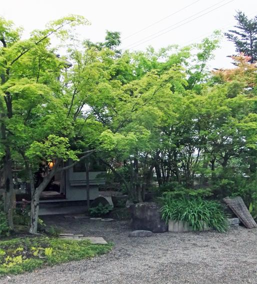 新緑の庭_f0045132_18474867.jpg