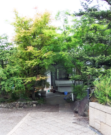新緑の庭_f0045132_18475654.jpg