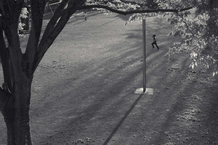 夕方の散歩(5cut) 近所の公園_e0342136_14215583.jpg