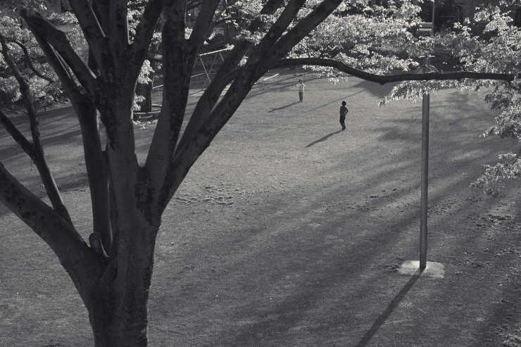 夕方の散歩(5cut) 近所の公園_e0342136_14220297.jpg
