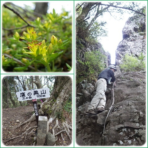 鷹ノ巣山へ_e0164643_15243793.jpg
