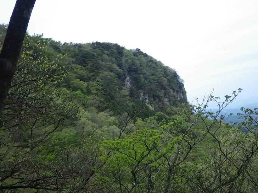 鷹ノ巣山へ_e0164643_15250055.jpg