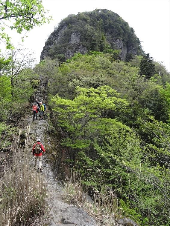 鷹ノ巣山へ_e0164643_16110718.jpg