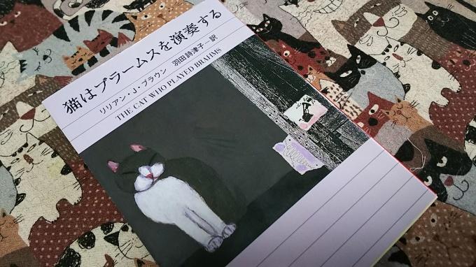 「猫都のアイドル展at百段階段」へ&ロクちゃん記念日♪_f0374160_22165891.jpg