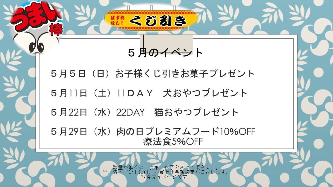 190430 5月イベント告知_e0181866_09040430.jpg