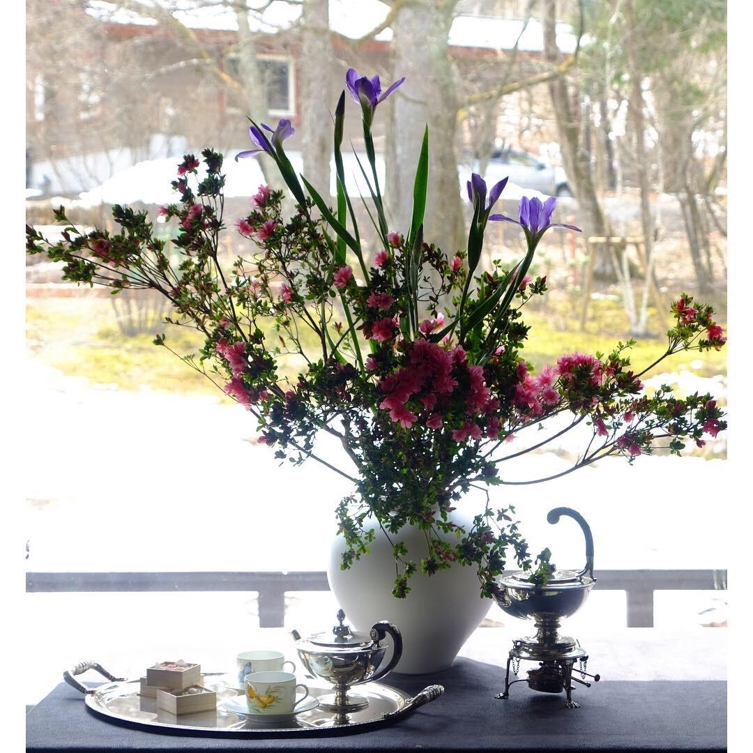 お花の下でTea Time_a0335867_18050445.jpeg