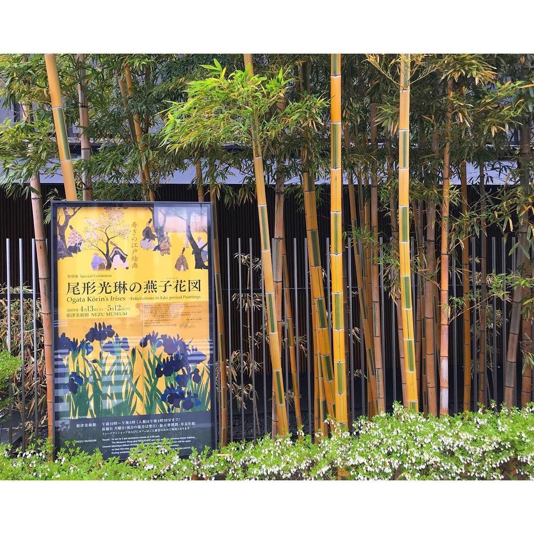 根津美術館と太田記念美術館_a0335867_18221886.jpeg