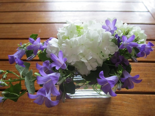 ベランダの花/ 平成最後の日_d0006467_19152190.jpg