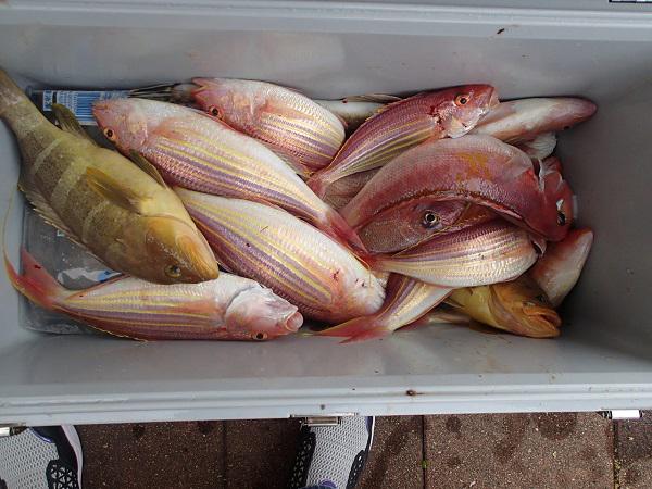 つばきマリーナ釣り大会🎣_a0077071_16215523.jpg
