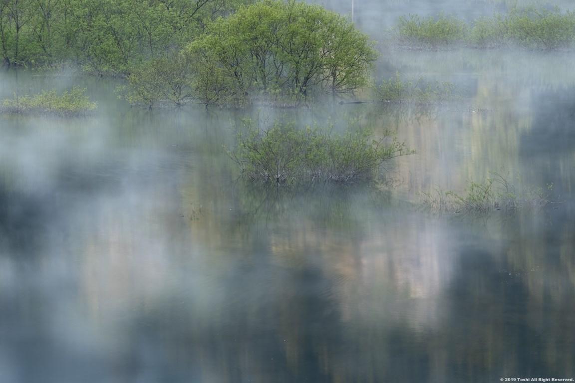 名残の桜 室生湖 1_c0350572_16125092.jpg