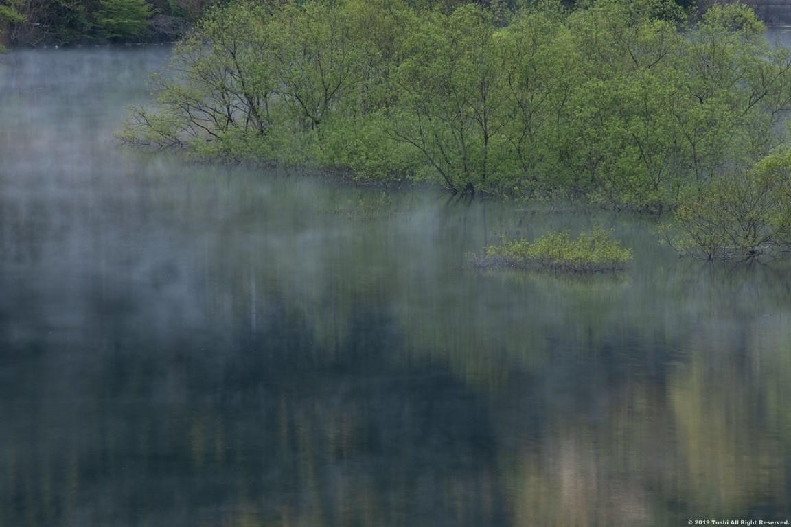 名残の桜 室生湖 1_c0350572_16131058.jpg