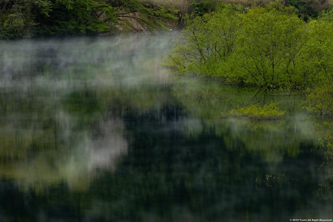 名残の桜 室生湖 1_c0350572_16141049.jpg
