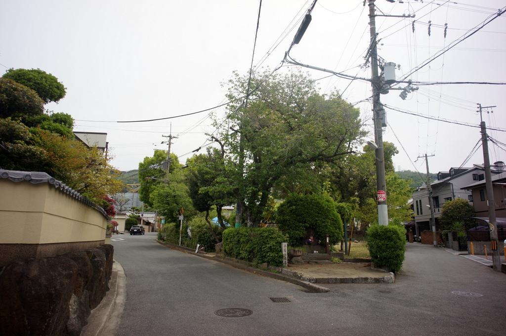 大阪八尾市茶吉庵さんにて_c0180686_18461084.jpg
