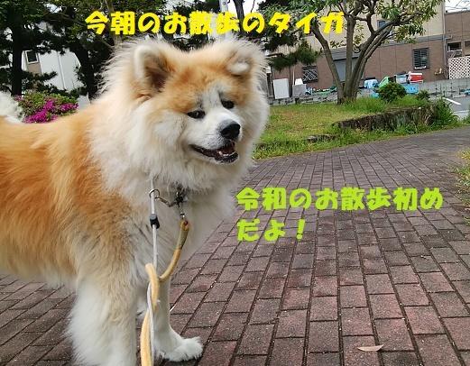 f0121712_23001875.jpg