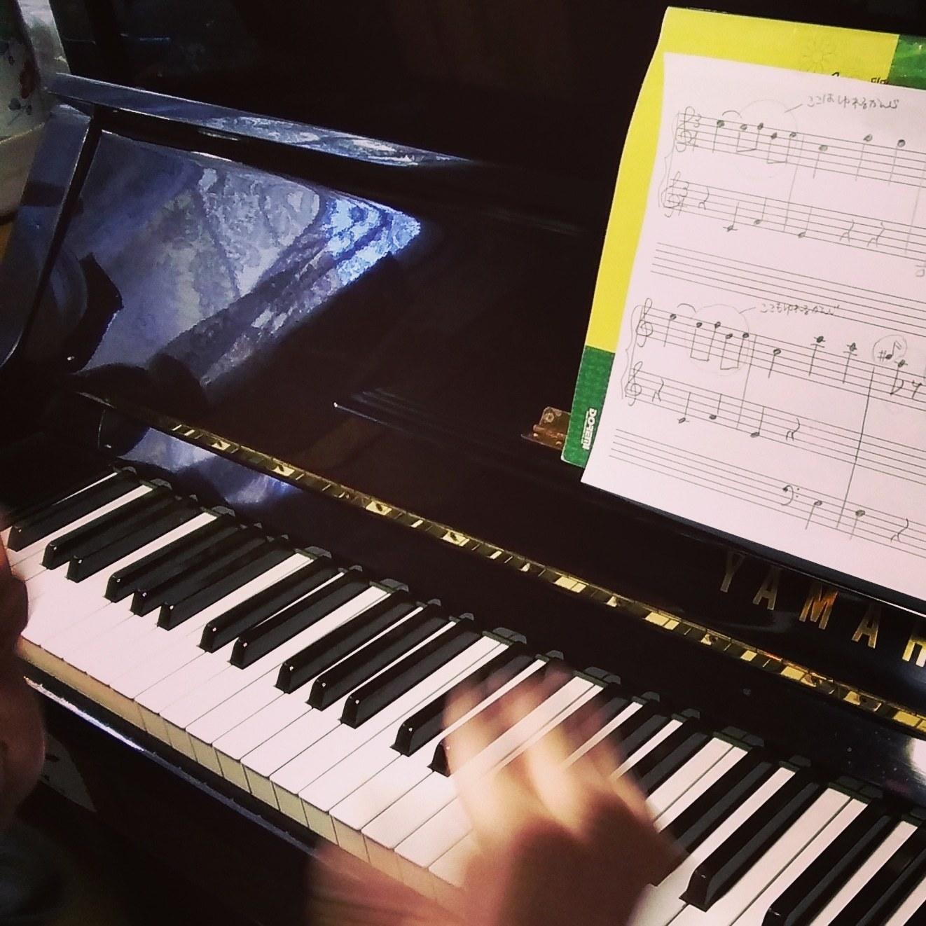 R・ピアノ教室 2019.4.30 フランツ・ヨーゼフ・ハイドン《2》_b0169513_17535128.jpg