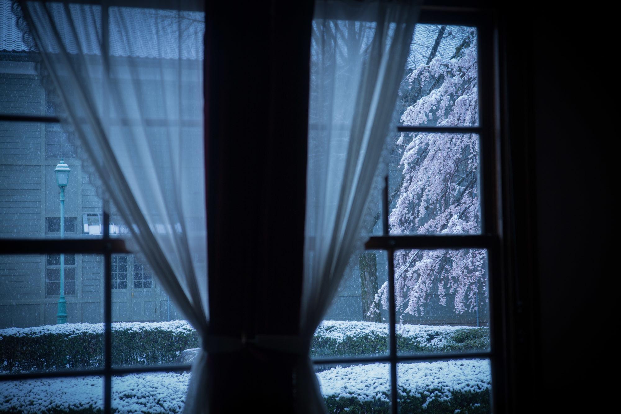なごり雪の窓辺~あがたの森の枝垂桜~_d0349418_20474244.jpg