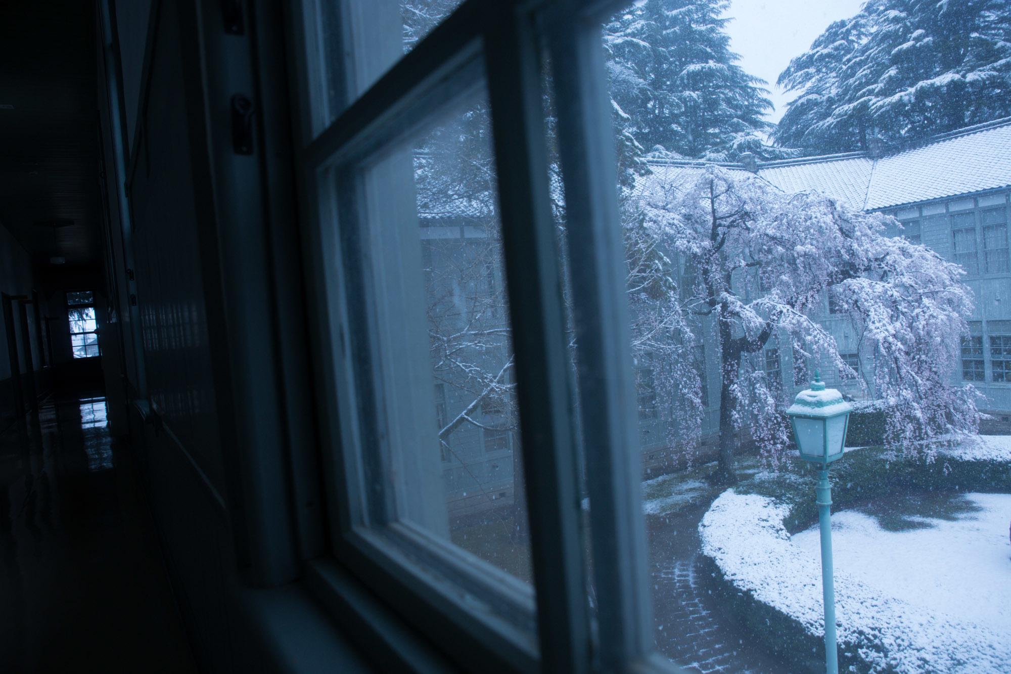なごり雪の窓辺~あがたの森の枝垂桜~_d0349418_20491150.jpg